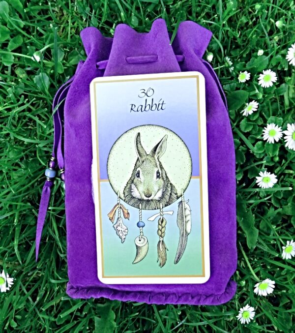 Hare Spirit Animal purple pouch with card a